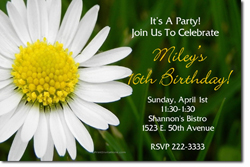 Design online, download jpg immediately DIY daisy flower party birthday Invitations